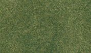 WOODLAND SCENICS RG5142 GREEN GRASS PROJECT SHEET 36X31