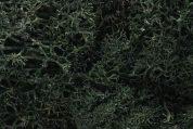 WOODLAND SCENICS  L164 LICHEN DARK GREEN